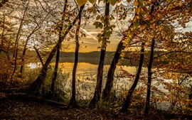 Preview wallpaper Autumn, forest, trees, lake, clouds, dusk