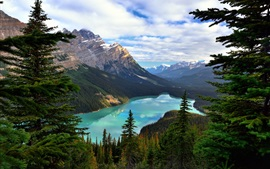 Preview wallpaper Canada, Alberta, Banff National Park, Mount Patterson, Peyto Lake, trees, clouds