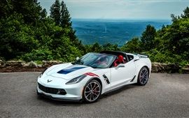 Chevrolet Corvette Stingray Coupe C7 supercar branco