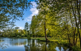 Preview wallpaper Croatia, Zagreb, trees, lake, park