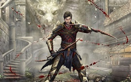 Preview wallpaper Dragon Age, PC game