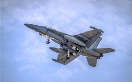 Preview wallpaper F-18 Fighter flight in sky