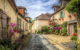 France, Aquitaine, street, houses, town, flowers
