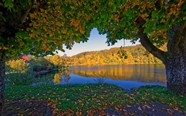 Preview wallpaper Germany Ulmen in the autumn, trees, river, yellow leaves