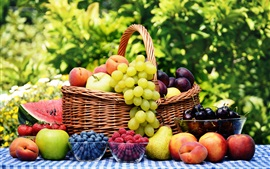 Harvest fruits, cherries, berries, apples, pears, plums, peaches, grapes