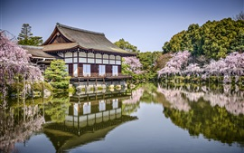 Preview wallpaper Heian Jingu, Kyoto, Japan, flowers, pond, spring