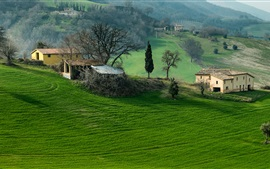 Italy, Campania, mountains, field, trees, grass, house