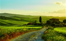 Italy, Tuscany, beautiful landscape, fields, road, grass, trees, house