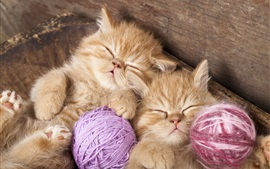 Preview wallpaper Kittens sleeping, yarn balls