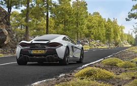 Preview wallpaper McLaren 570GT white supercar back view, road, trees