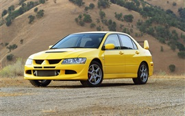 Mitsubishi Lancer Evolution VIII yellow car