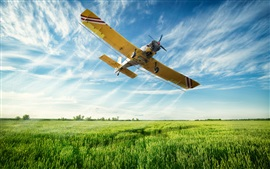 Preview wallpaper Multi purpose light aircraft flight in sky, fields