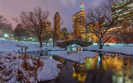 New York, Central Park, snow, trees, river, skyscrapers, lights, USA