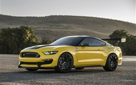 Preview wallpaper Shelby Ford Mustang GT350 yellow car