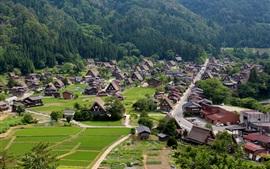 Aperçu fond d'écran Shirakawago, Shiroyama, fermes Gassho-zukuri, village Ogimachi, Japon