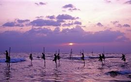 Preview wallpaper Sri Lanka, sea, dusk, people fishing