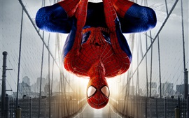 Preview wallpaper The Amazing Spider Man 2, bridge, sunlight