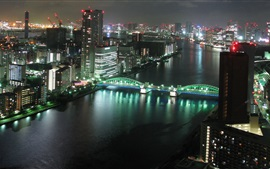 Preview wallpaper Tokyo city night, buildings, skyscrapers, river, bridge, lights, Japan
