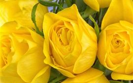 壁紙のプレビュー 黄色の花のマクロ撮影をバラ