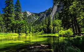 Preview wallpaper Yosemite National Park, California, USA, lake, green trees, mountain