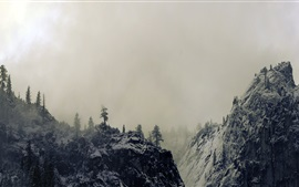 Preview wallpaper Yosemite Valley, California, USA, winter, fog