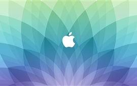 Apple logo, blue sector shaped background