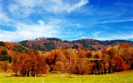 Preview wallpaper Beautiful autumn season, trees, grass, blue sky