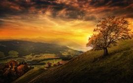 Belo pôr do sol, montanha, inclinação, árvore, nuvens, casas