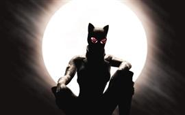 Aperçu fond d'écran Catwoman, Selina Kyle