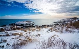 На побережье зимой, белый снег, море, камни, трава, облака