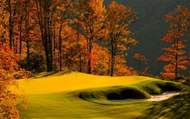 Preview wallpaper Forest, trees, grass, lawn, golf, autumn