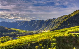 Preview wallpaper Germany, Ediger-Eller, mountains, river, fields, grape plantations, clouds