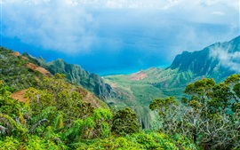 Preview wallpaper Hawaii beautiful nature landscape, blue sea, mountains, trees
