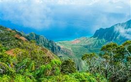 Гавайи красивая природа пейзаж, синее море, горы, деревья