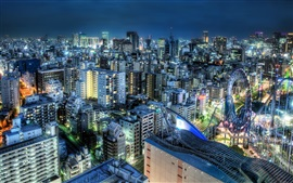 Japan night city, houses, buildings, lights, traffic