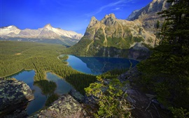 Lake, mountains, trees, forest, blue sky