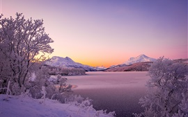Norway, Scandinavian Mountains, lake, winter, thick snow, trees
