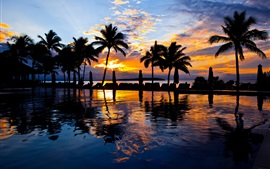 Preview wallpaper Palm trees, pool, water, sea, resort, sunset, evening
