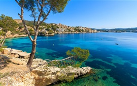 Preview wallpaper Palma, Menorca, tree, blue sea, coast, houses, Spain