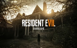 Preview wallpaper Resident Evil 7
