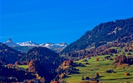 Preview wallpaper Switzerland, Alps, mountains, houses, trees, grass, blue sky