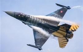 lutador da força aérea turca