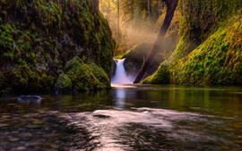 Preview wallpaper Waterfall in forest, creek, green, moss, trees, sun rays