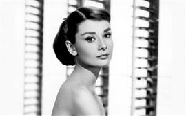 Aperçu fond d'écran Audrey Hepburn 05