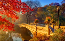 Preview wallpaper Autumn park at morning, river, bridge, trees, flowers