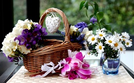 Preview wallpaper Basket, colorful flowers, freesia, hyacinths, chamomile, cyclamen