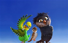 Cartoon movie, parrot, sparrow, owl