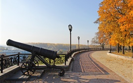 Chernigov, Ukraine, autumn park, trees, cannon