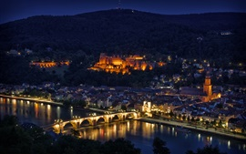 Preview wallpaper City night, river, bridge, houses, illumination, Heidelberg, Germany