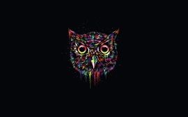 Preview wallpaper Colorful owl, creative design, black background